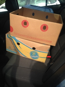 2 boxes that make a smiley face.